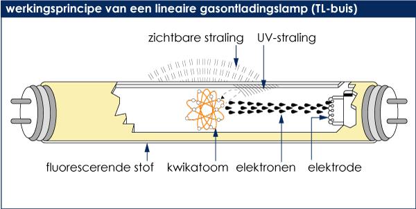 Lichtbronnen Fluorescentie lampen TL
